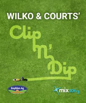 Wilko & Courts' Clip n' Dip