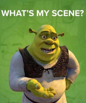 What's My Scene?