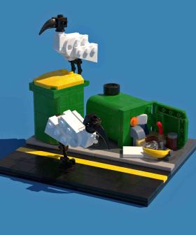 Here's How To Create An Aussie Bin Chicken Scene Out Of LEGO