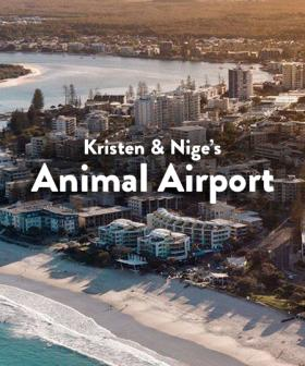 Kristen & Nige's Animal Airport