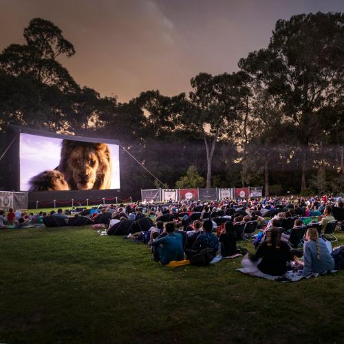 Outdoor Cinemas return to Canberra