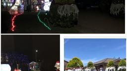 Dulverton Amaroo Christmas Lights