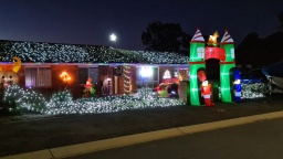 Ina Gregory Christmas Lights