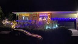 Elischer Dunlop Christmas Lights