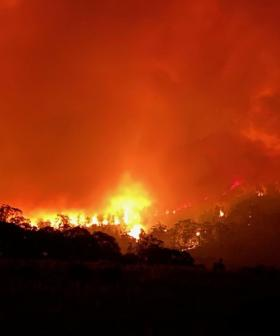 Canberra marks one year since Orroral Valley fire