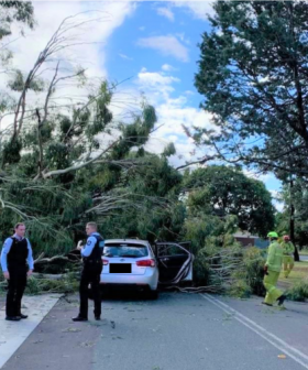 Lucky escape for elderly driver in Ainslie