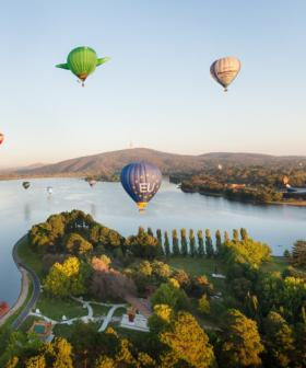 Enlighten's Canberra Balloon Spectacular is finishing up for 2021