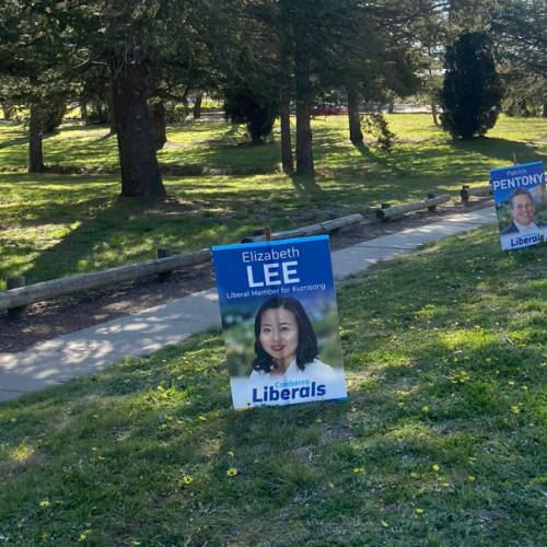 Committee recommends banning roadside political signs in the ACT