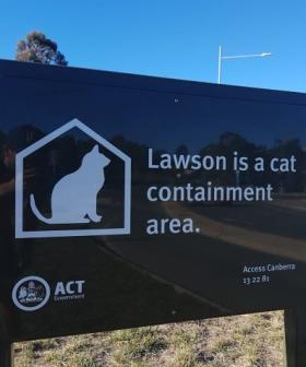 Cat Containment zones to be rolled out to every Canberra suburb