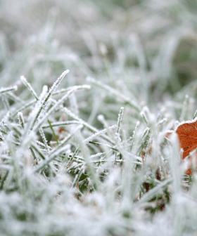 2021 was Canberra's coldest start to Winter EVER