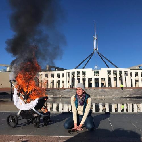 Protestors arrested after Parliament House vandalised