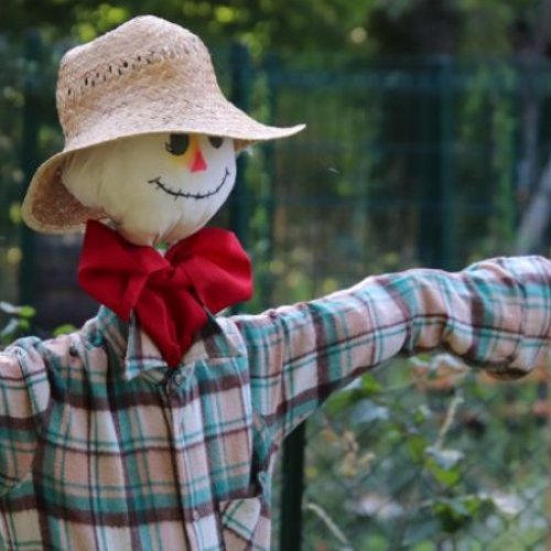 The CBR Scarecrow competition is now on!