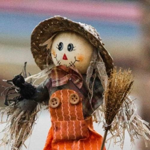 You Can Judge Canberra's Best Scarecrow